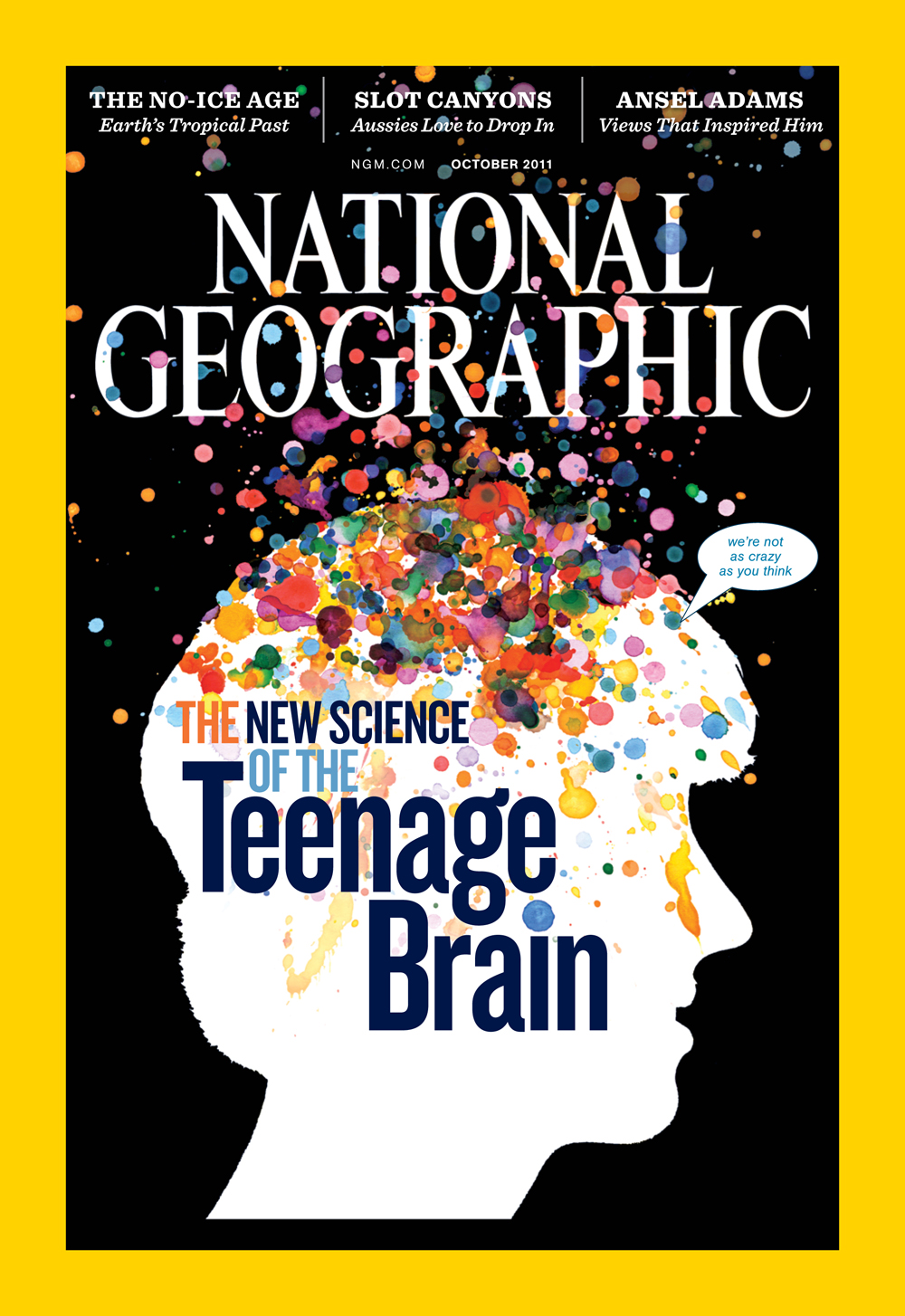 the teenage brain A child's body goes through physical changes that are obvious to all parents  less obvious are the vital changes taking place in a child's brain,.