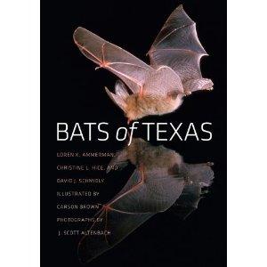 Bats of Texas